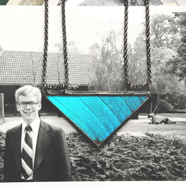 Morpho Large Triangle with Double Chains