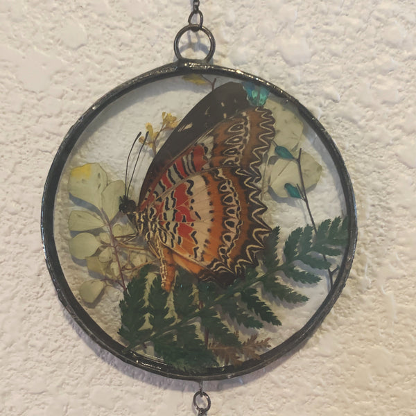 Red Lacewing Butterfly Portal Mirror Wall Hanger