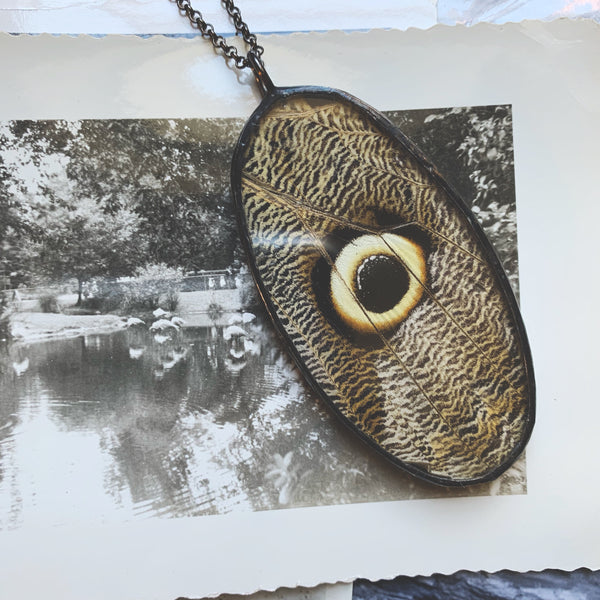 Owl Eye Butterfly Cameo Oval Pendant