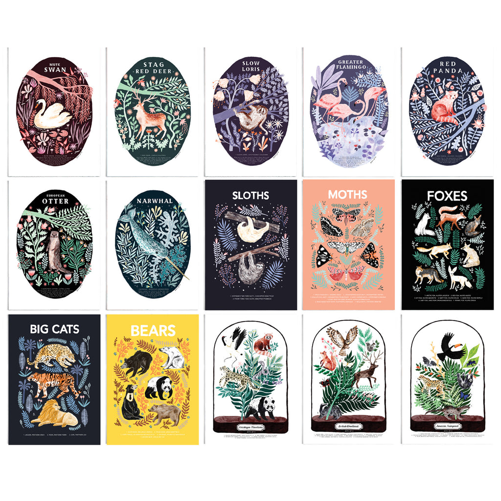All 15 postcards featured in the set. Swan, stag, slow loris, flamingo, red panda, otter, narwhal, sloth, moth, foxes, big cats, bears and 3 different miniature environment postcards.