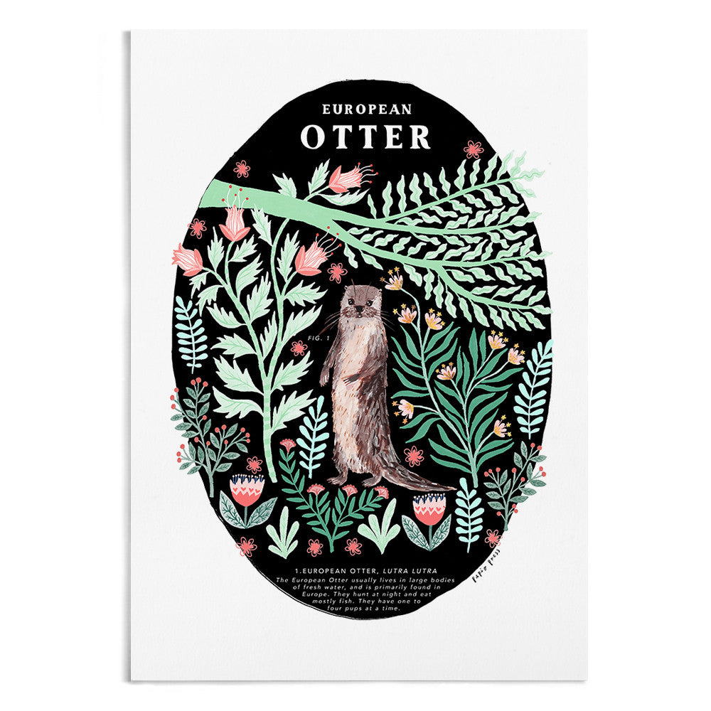 A natural history painting of an otter surrounded by green and pink foliage.