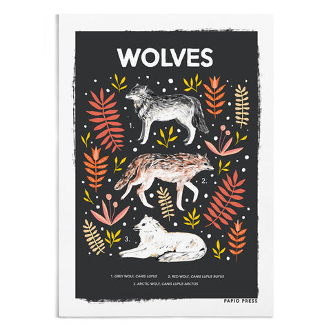 Wolves Natural History Print - A4 / A3 Artists Print - Papio Press