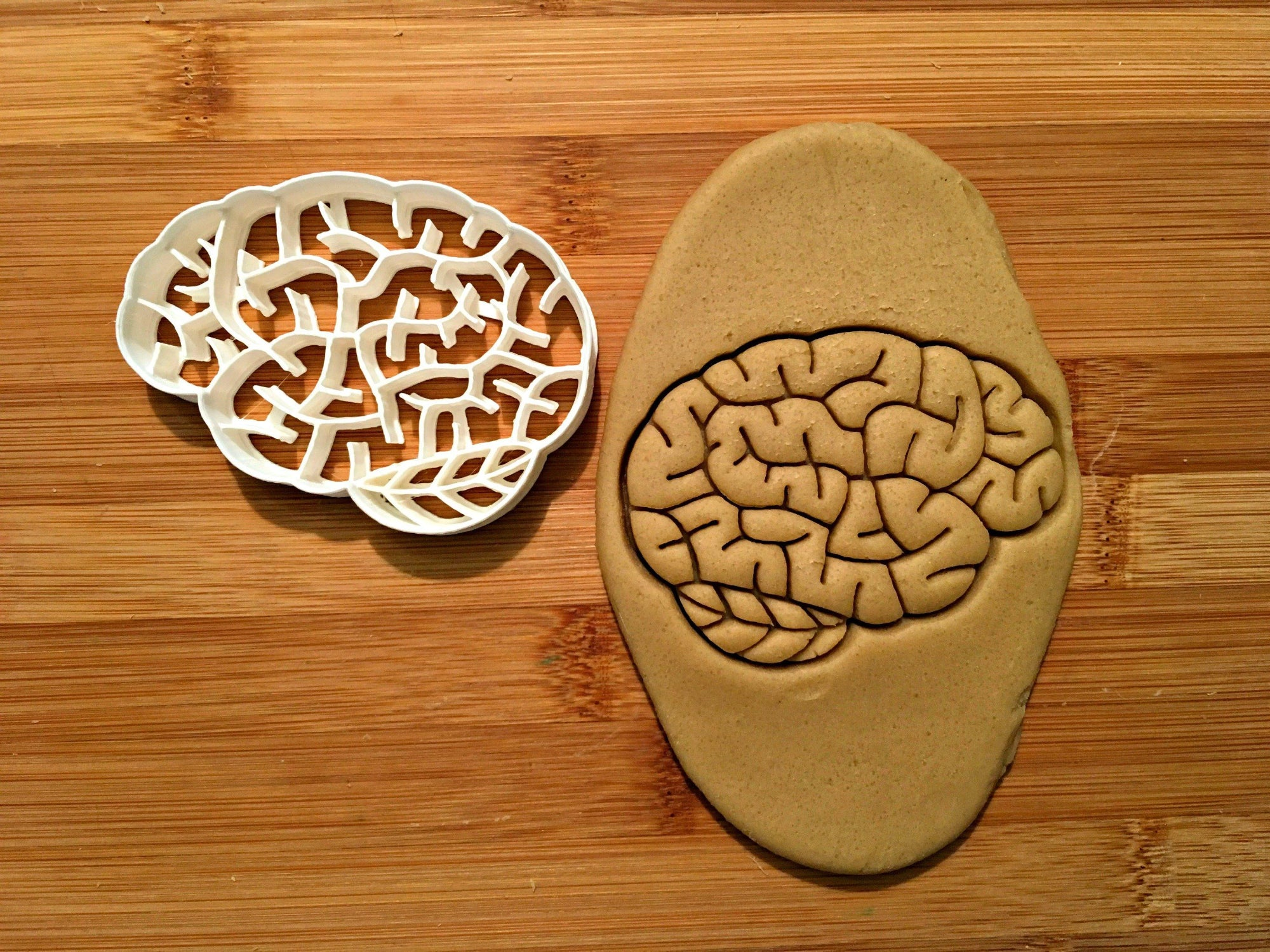 Brain Cookie Cutter