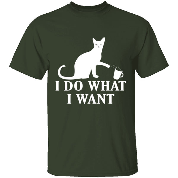 I Do What I Want T-Shirt CustomCat