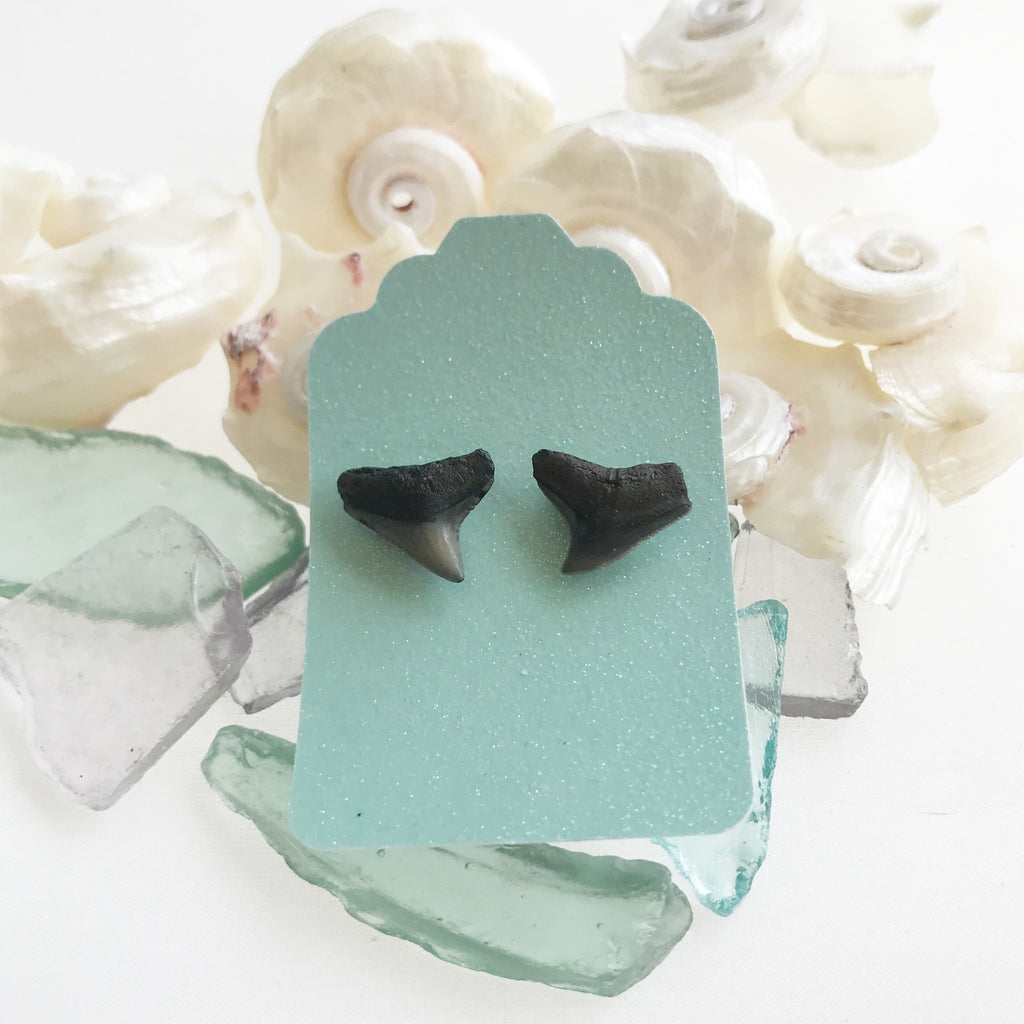 Ocean Inspirations - Shark Teeth Studs