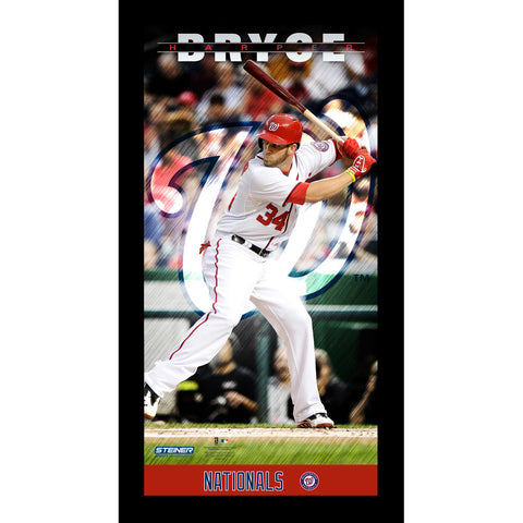 Bryce Harper Washington Nationals Player Profile Wall Art 9.5x19 Framed Photo