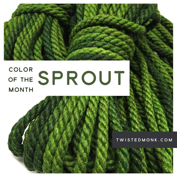 Color Of The Month: Sprout