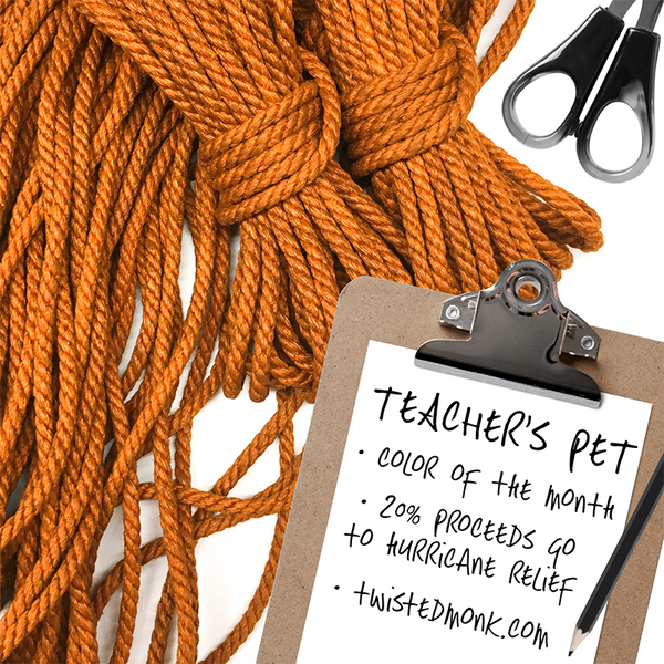 Color Of The Month: Teacher's Pet