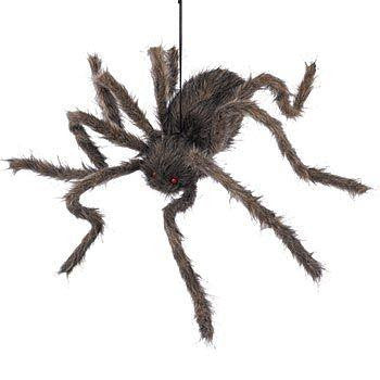 Posable 30 Inch Hairy Spider