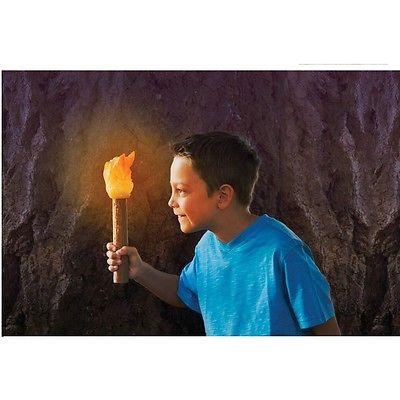 Light Up Torch
