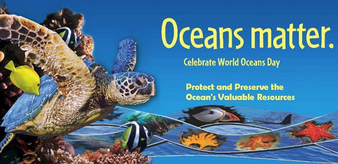 Celebrating World Oceans Day at Whale's Tale