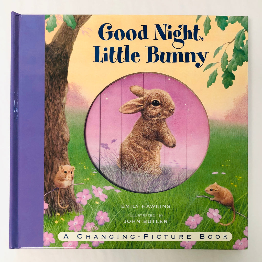 Good Night. Little Bunny Book