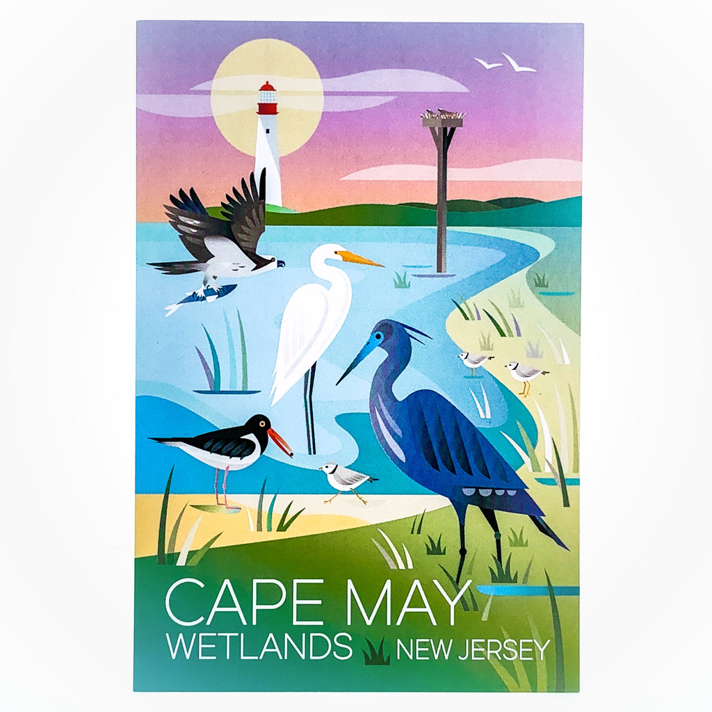 Cape May Wetlands Postcard
