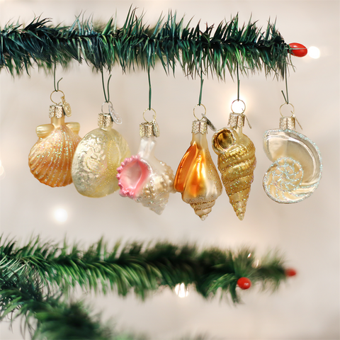 Assorted Sea Shell Set Ornament