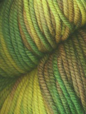 Araucania Huasco Chunky Hand Painted - Unraveled Yarn Shop