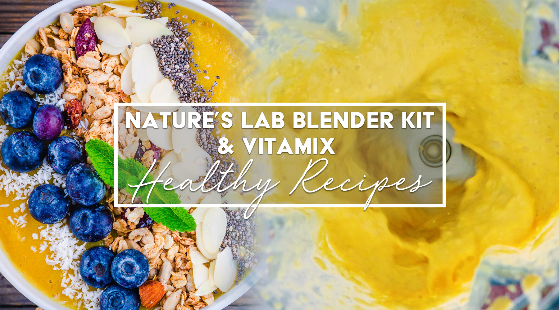 Nature's Lab Blender Kit & Vitamix Healthy Recipes