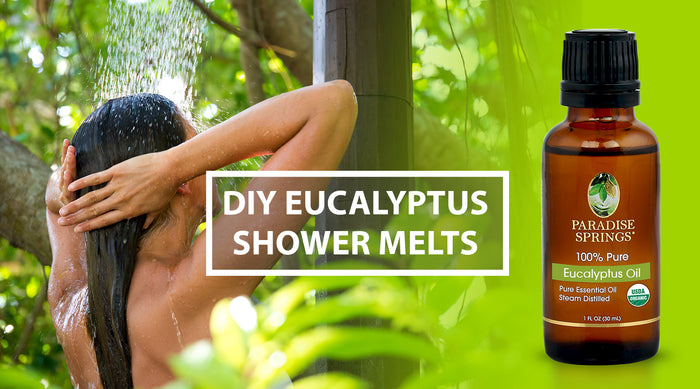 DIY Eucalyptus Oil Shower Melts
