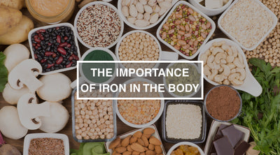 The Importance of Iron in the Body