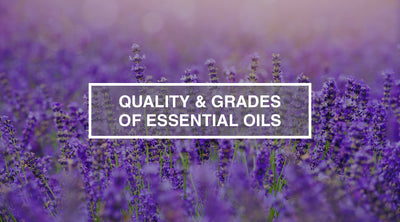 Quality & Grades of Essential Oils