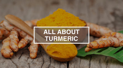 All About Turmeric: Which Turmeric Supplement is Right For Me?