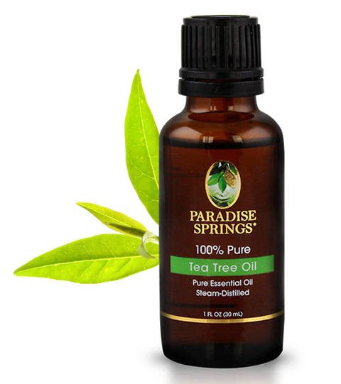 Tea Tree Oil Bottle