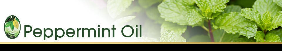 Peppermint Oil banner