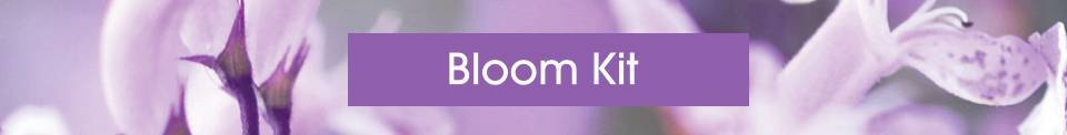 Bloom Kit Banner