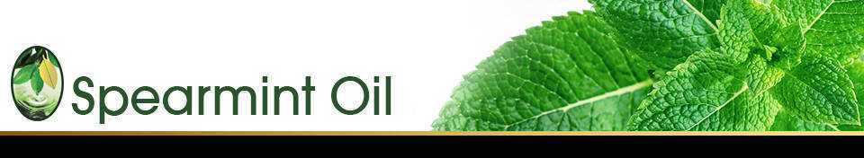 Spearmint Oil Banner