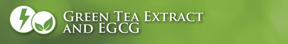green tea extract and egcg