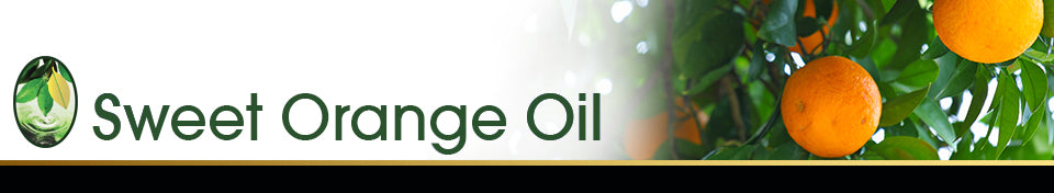 Sweet Orange Oil Banner