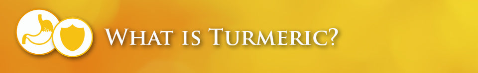 what is turmeric banner