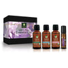 Paradise Springs Organic Bloom Kit Bottles with Box
