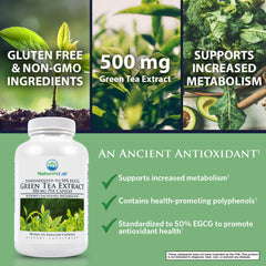 Nature's Lab Green Tea Extract 500mg 90 capsules Benefits