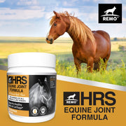 REMO HRS Equine Joint Formula