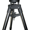 iOptron AZ Mount Pro Computerized Level & Go Alt-Azimuth Mount with Tripod - 8900