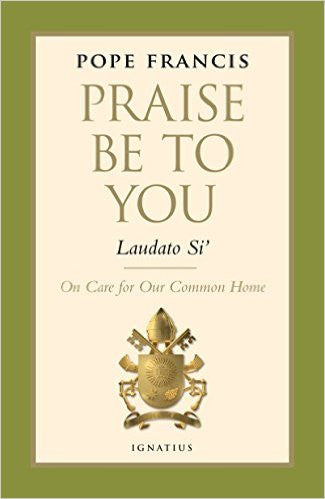 Praise Be To You: Laudato Si (Pope Francis)