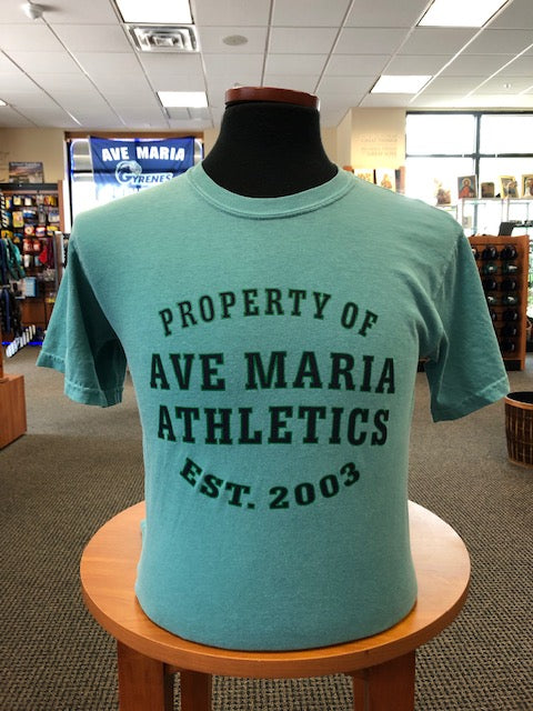 Property of Ave Maria Athletics Seafoam Comfort Colors