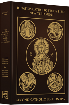 Ignatius Catholic Study Bible New Testament Leatherback (Scott Hahn and Curtis Mitch)