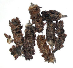 dried Xia Ku Cao (Prunella Spike) dried chinese herb 16 oz(454 g.)