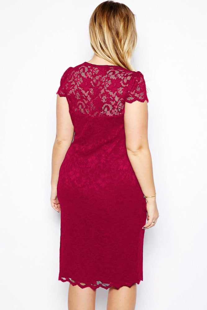 MGC Wine scalloped plus size midi dress