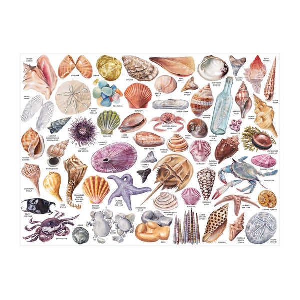 The Beachcombers companion 1000 piece puzzle shows shells and other beach finds at crane and kind unique beach puzzle