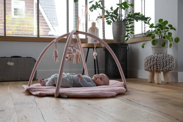 Pink Clam Baby Activity Gym