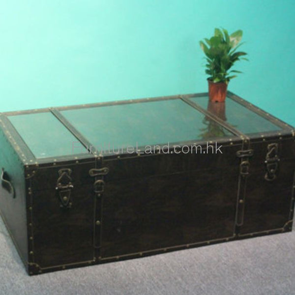 Storage Trunk: Stk01 Trunk