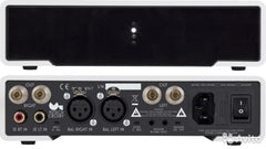 "M2Tech A1 amplifer (""Crosby"").   2 channel and monoblock amplifer."