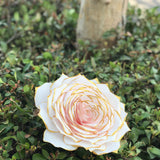 Giant Blush 11 Inch Paper Filter Rose with Metallic Gold Tips - Colors Can Be Customized