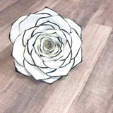 Tipped Paper Filter Rose in customizable colors