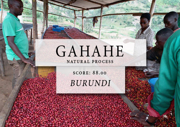 gahahe natural process - BURUNDI