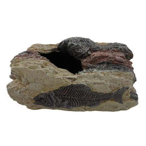 Betta Large Fossil Rock ornament