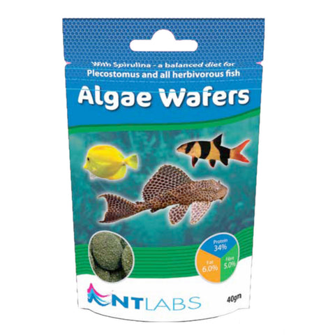 NT Labs Algae Wafers