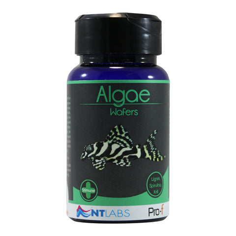 NT Labs Pro-f Algae Wafers